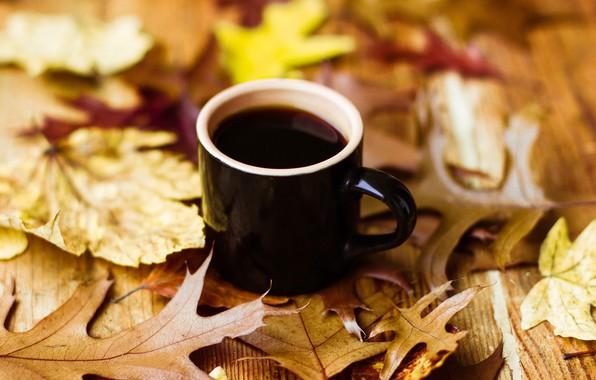 Fall Leaves Ipad Wallpaper Обои осень листья кофе чашка Autumn Leaves Book