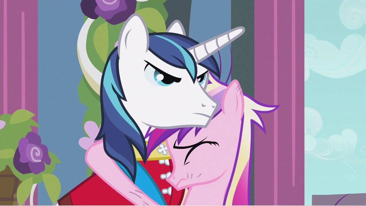 my little pony shining armor my little pony shining armor princess