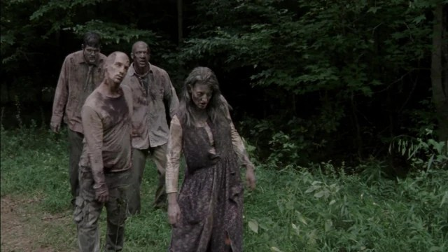 File:The Walking Dead S03E06 1603.jpg