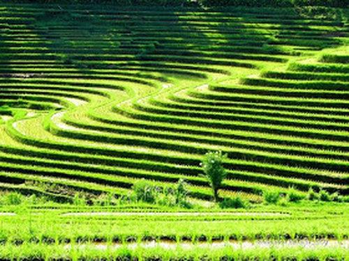 en7u53un47zz t Indahnya pemandangan alam di Indonesia