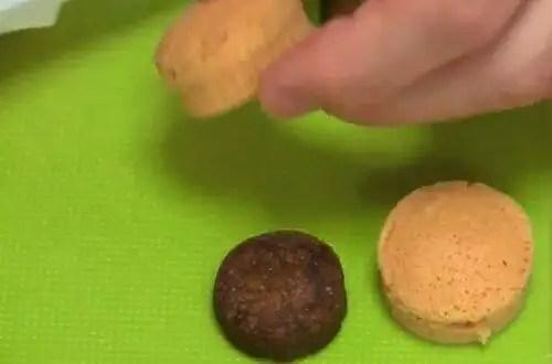 hamburguesapolvo31 - Mini Hamburguesas en polvo un invento asiático