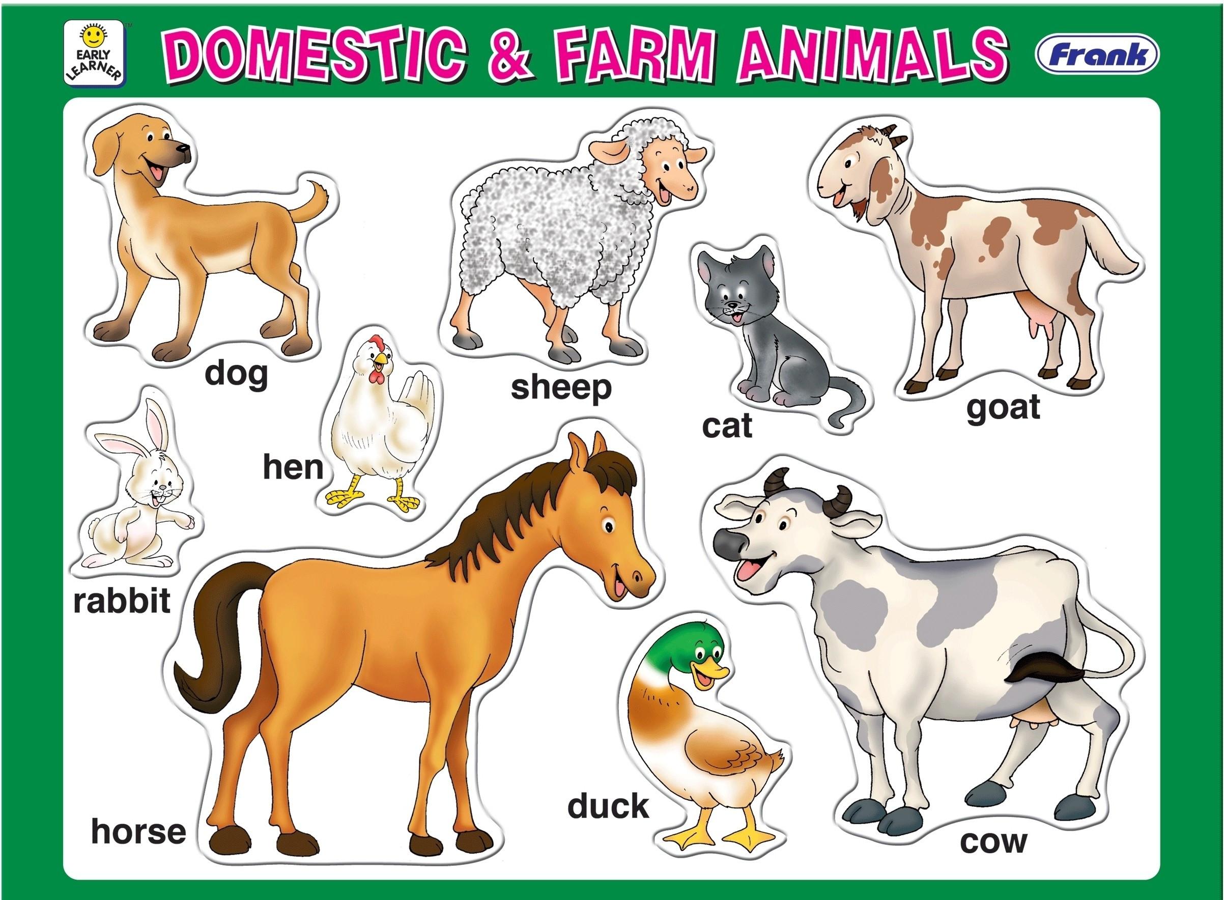 Frank Domestic And Farm Animals