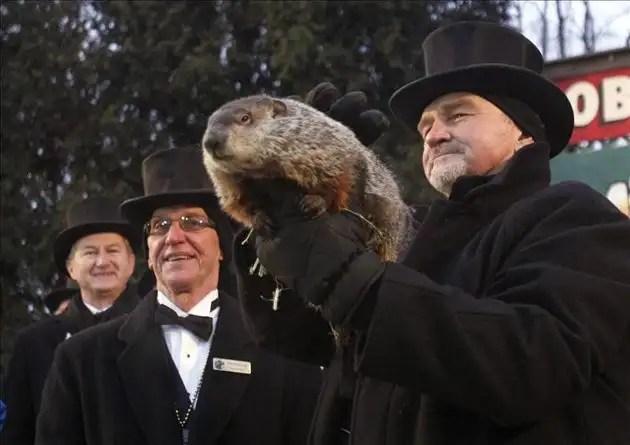"Piden ""pena de muerte"" para marmota meteoróloga"