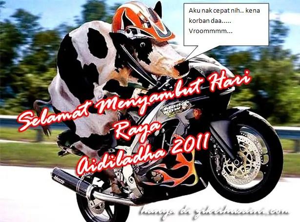 lembu , ibadah korban, kad ucapan hari raya aidiladha 2011, ucapan hari raya aidiladha