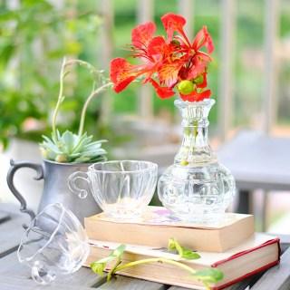 goodwill, vintage, findings, teacups, books, book, mug, pewter, treasure, vase, flower, succulent, ideas