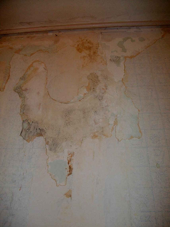 Papier peint sur platre  comment le retirer