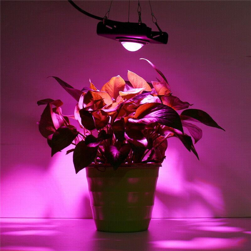 Full Spectrum COB Grow Light High Brightness PAR Automatic Temperature Control LED Flood light for Indoor Grow Box Greenhouses