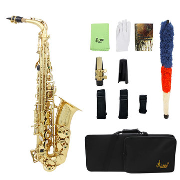 SLADE LD-896 E-flat Brass Pipe Alto Saxophone with Bag Clean Tools