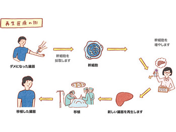 ついにキター!!幹細胞コスメの取り扱い開始ッッ!!_20190403_1