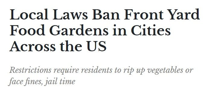 美国部分地区法律禁止在前院种菜
