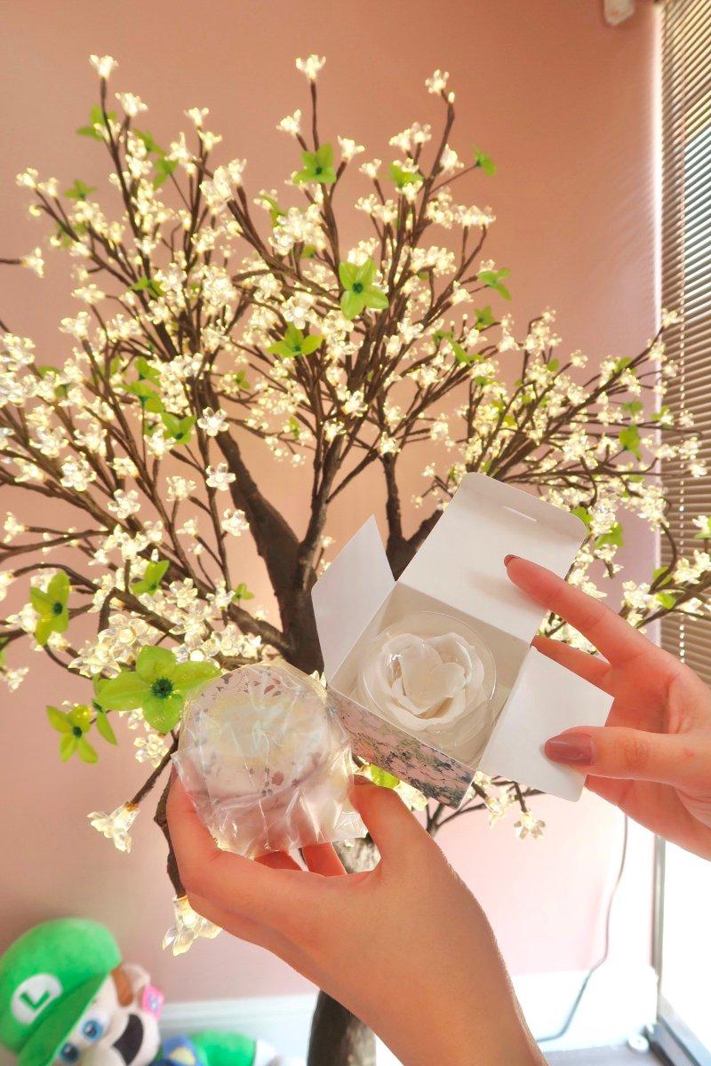 探店|達拉斯超棒的日系美妝店FUFU JAPAN-北美省錢快報 Dealmoon.com 攻略