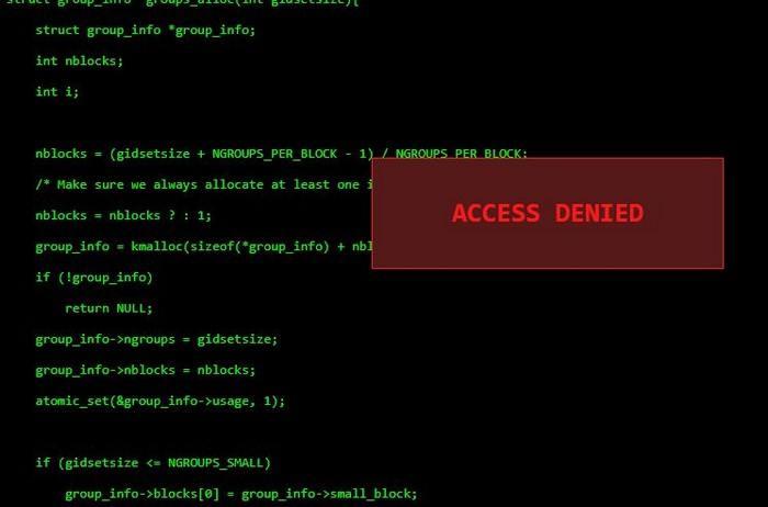 hackertyper.net Clone Free Download