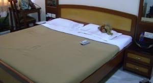 Hotel Tara Palace Daryaganj Delhi Trivago In