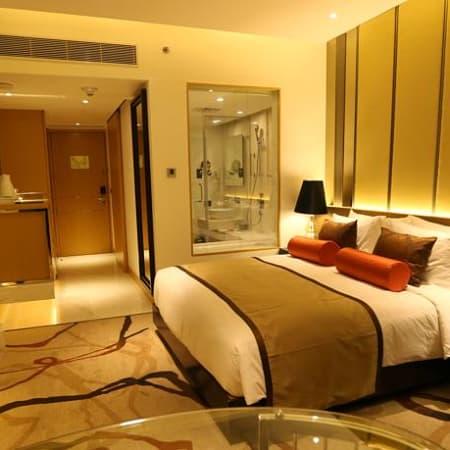 Hotels Near Indira Gandhi International Airport In Delhi