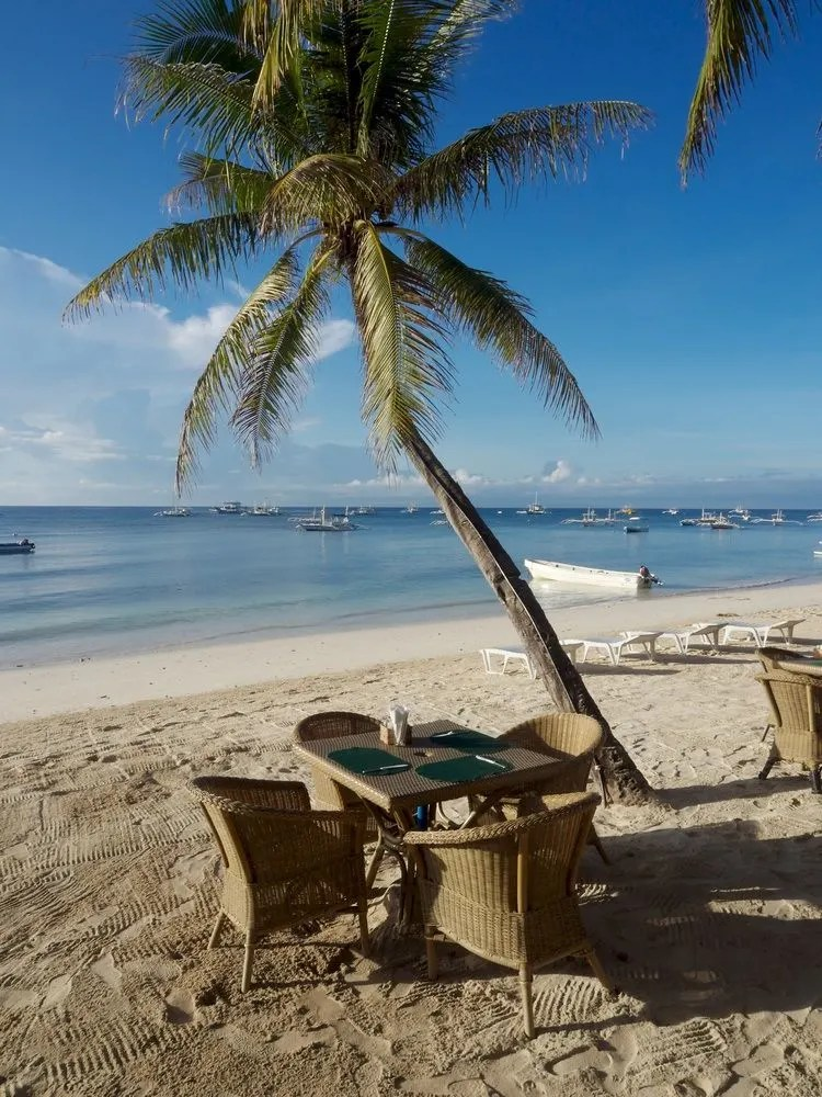 Resort Alona Vida Beach Resort Panglao Trivago Co Uk