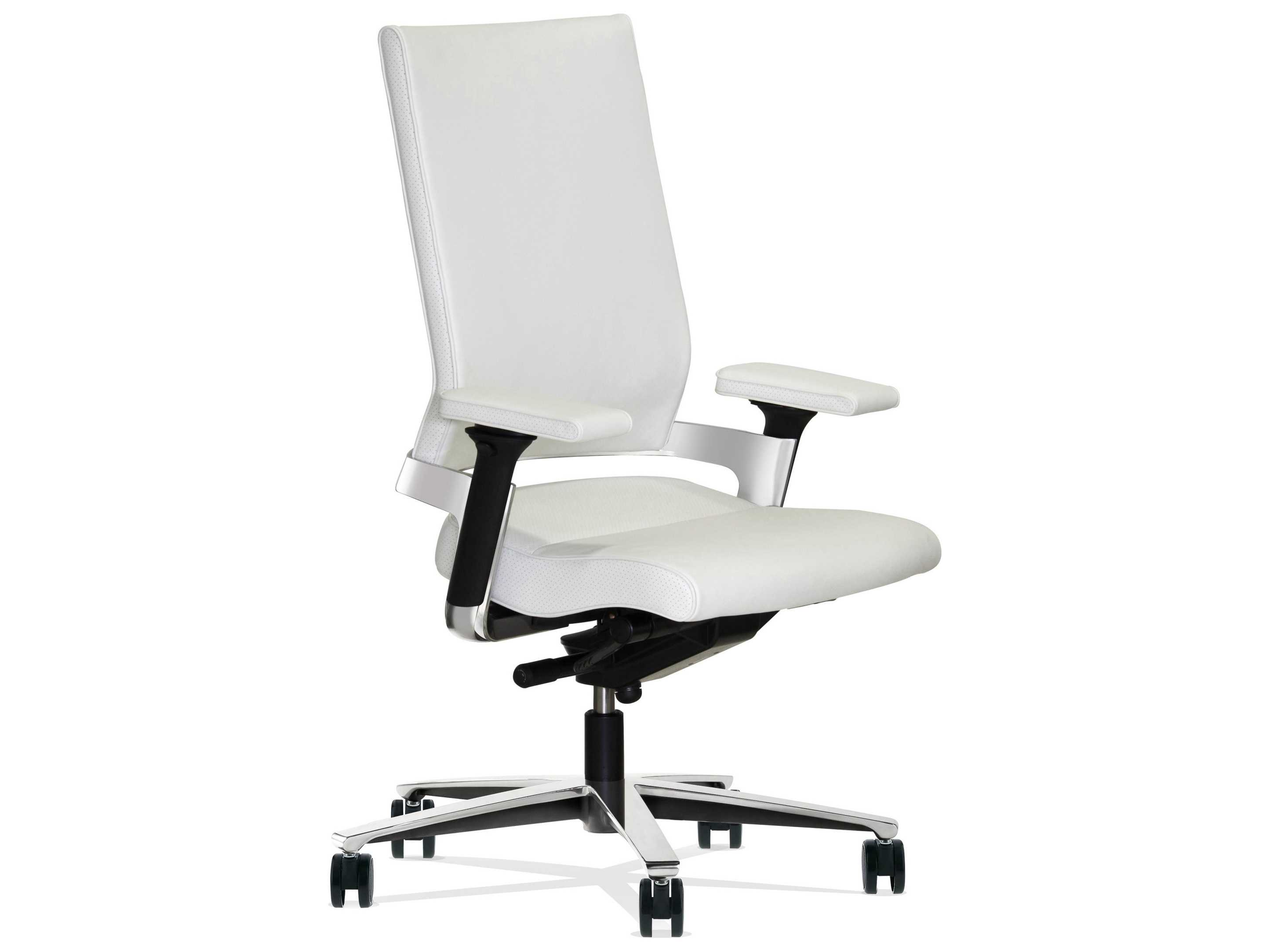 ergonomic chair description cover rentals tallahassee fl dauphin lacinta executive mid back daulc1020