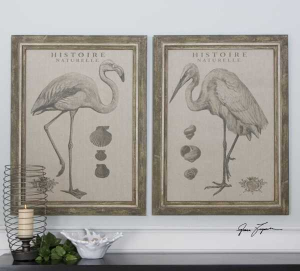 Uttermost Natural History Framed Wall Art 2 Piece Set