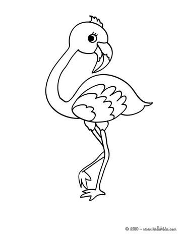 Malvorlage Flamingo Einfach