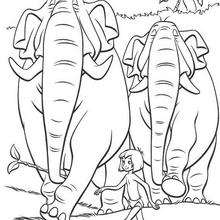 Das Dschungelbuch 20 Zum Ausmalen Dehellokidscom