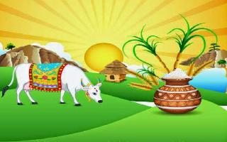 Happy Pongal 2021: Wishes, Quotes, Messages, Wishes, Whatsapp and.