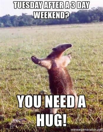3 Day Weekend Meme GIFs | Tenor