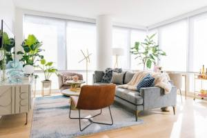 backgrounds zoom virtual elm west interior living apartment meeting nyc cozy meetings space plants york stylish makeover give tour soothing