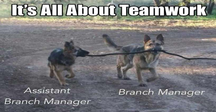 22 Awesome Examples of Teamwork Done Right