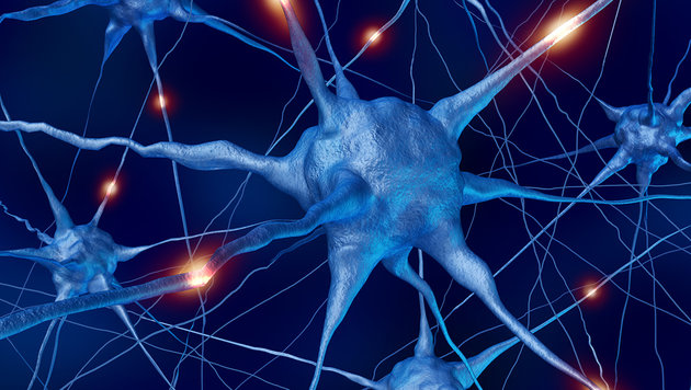https://i0.wp.com/imgl.krone.at/Bilder/2016/12/21/Forscher-entdecken-Vorratslager-in-Nervenzellen-DNA-Kopien-story-545396_630x356px_90b501f5ab230eaf556c6734f8b32485__nervenzelle-s1260_jpg.jpg