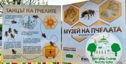 Вход за Музей на пчелата, плюс лекция или детска работилница с аниматор
