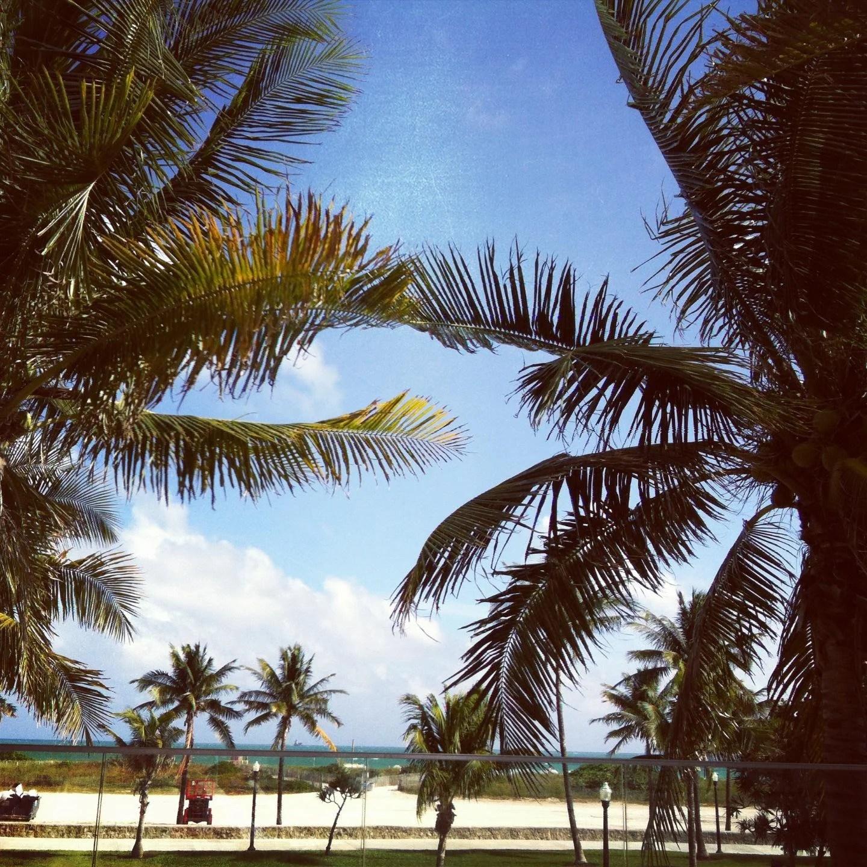 Fotos De Planta En Hotel Victor South Beach - Miami
