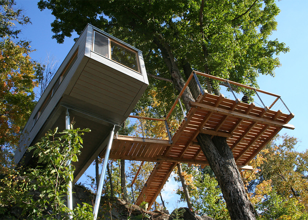 The Cliff House Is An Eco Treehouse Wrapped Around A Maple Tree