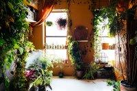 My 1200sqft: Inside Summer Rayne Oakes' Williamsburg Oasis ...