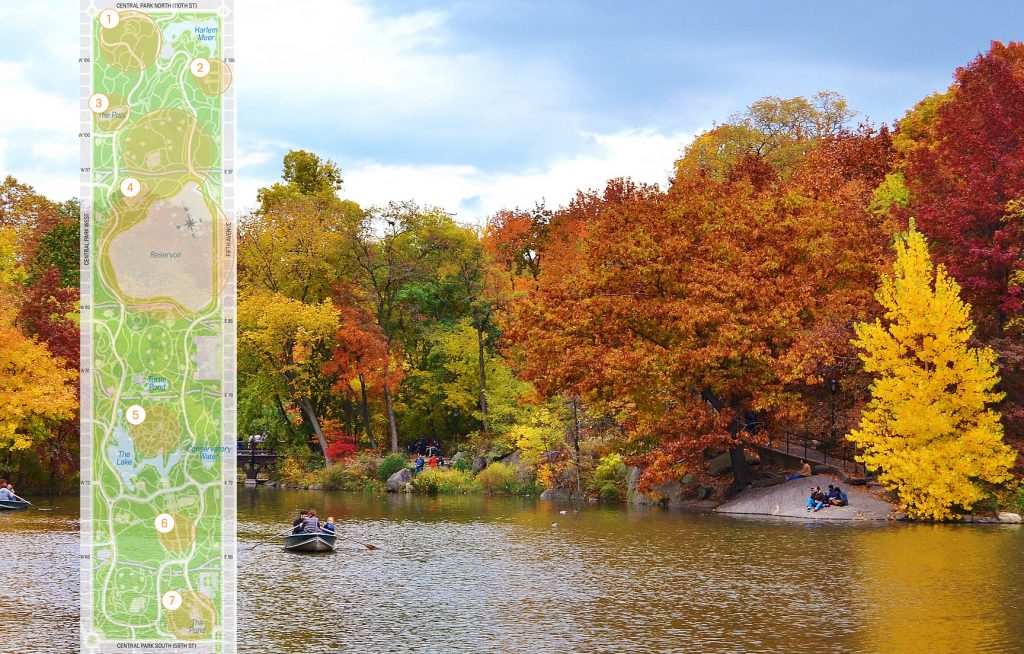New England Fall Foliage Desktop Wallpaper Where To Find Fall Foliage In Central Park 6sqft