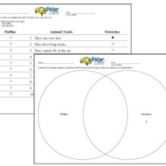 Venn Diagram Graphic Organizer Wiring For Dune Diagrams Printables Blank