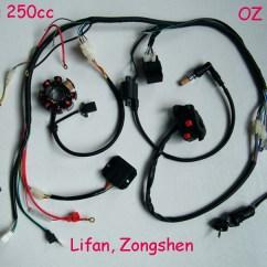Lei Quad Bike Wiring Diagram 2006 Jeep Wrangler Stereo Complete Electrics Atv 200cc 250cc Cdi Wire Harness Zongshen Categories