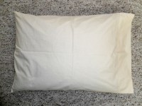 "PRE""WHOLESALE"" SAMPLES BUCKWHEAT HULL BED PILLOWS"