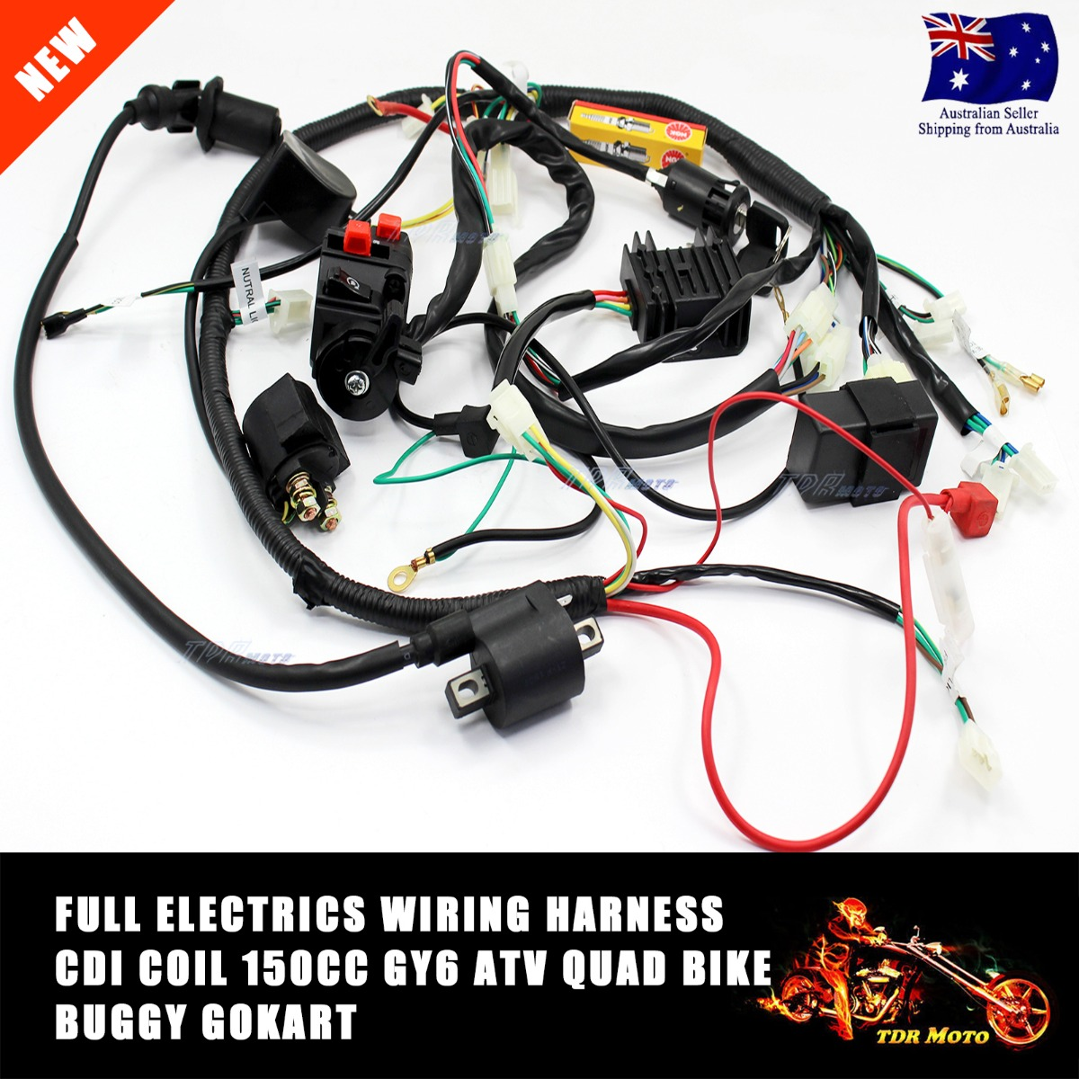 GY6 150CC ATV QUAD Buggy Carby Carburetor WIRE HARNESS WIRING