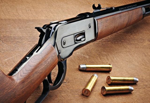 Vinte fatos que comprovam que a posse de armas deixa uma populao mais segura