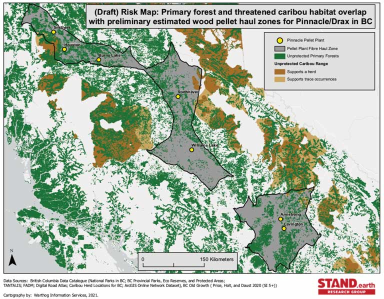 And yet we are one of the last jurisdictions in the world still logging irreplaceable old growth forests on public lands. With British Columbia S Last Old Growth At Risk Government Falters Critics
