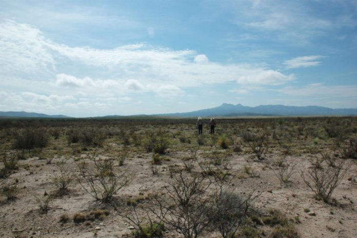 Two ranchers walk across parched rangelands among weeds, baked soil, and dead grass in Culberson County, Texas.