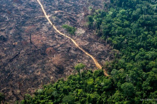 La deforestación en Brasil empezó a crecer, nuevamente, desde el año 2012. Foto: Lilo CLareto / Imazon