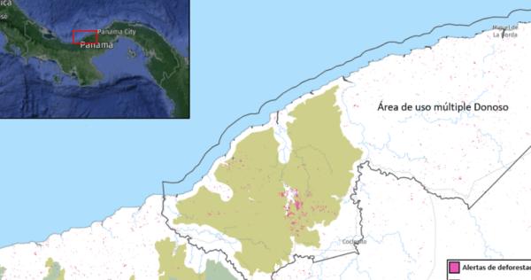 La mina está ubicada en un área de bosque primario que permanecía intacto hasta el 2000. Los datos satelitales de la Universidad de Maryland registraron casi 4500 alertas de deforestación.