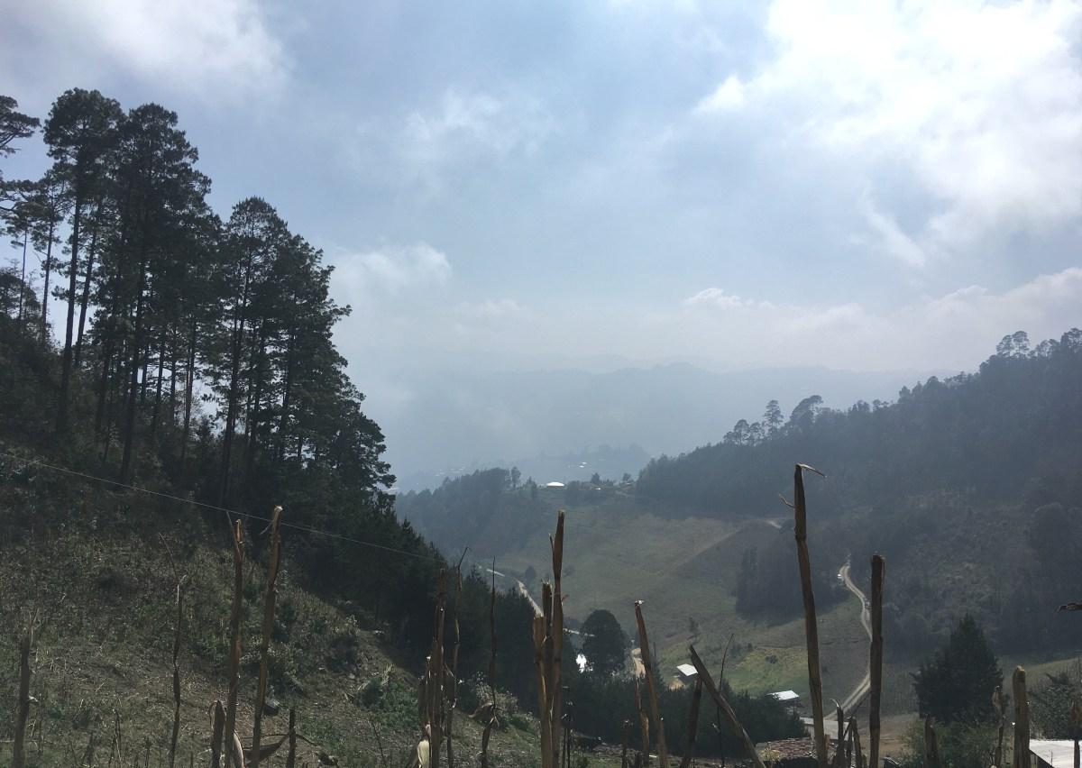 Sierra de Zongolica
