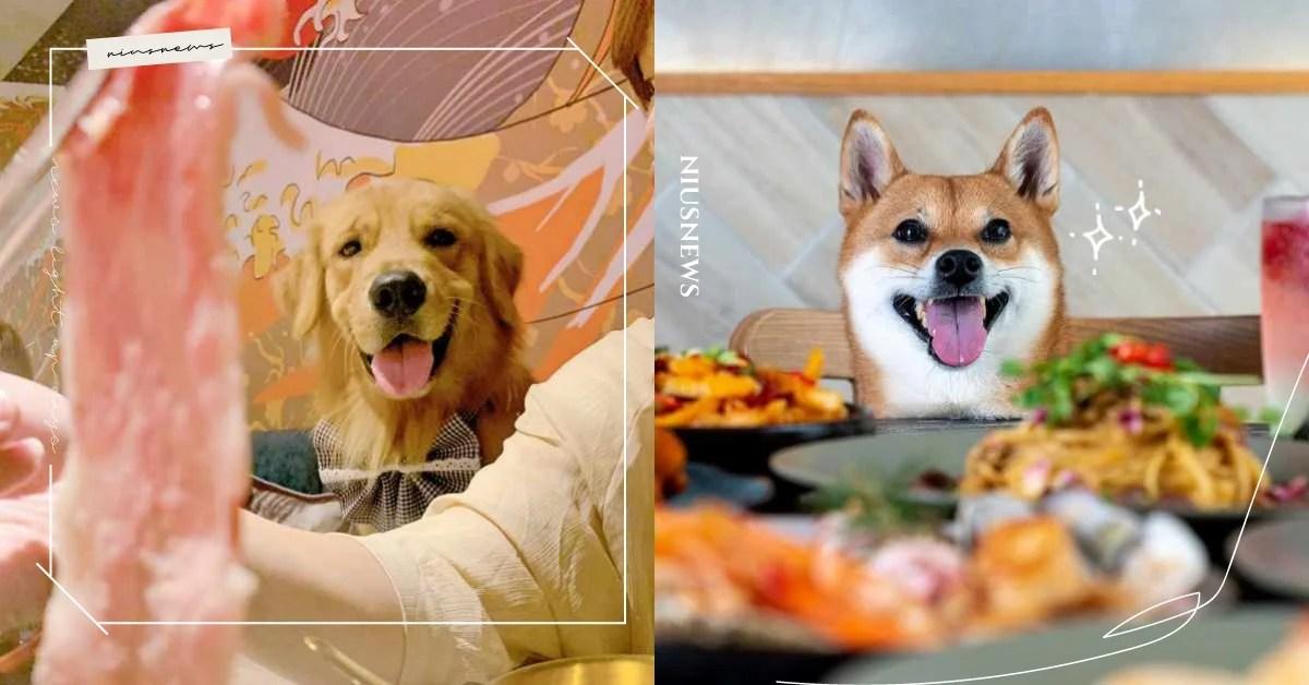 餐酒館也有寵物餐?臺北8家「主人都想偷吃」寵物餐廳!韓式、燒烤、火鍋通通有!   寵物吃什麼、寵物出去 ...