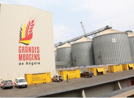 Angola exporta farelo de trigo para a França
