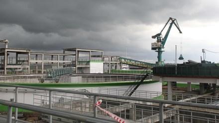 Nhà máy giấy, Công ty TNHH giấy Lee & Man, hệ thống nước thải nhà máy giấy, nhà máy giấy ở Hậu Giang, dự án Trung Quốc, sông Hậu
