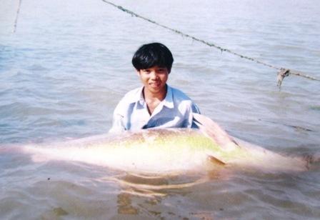 dân chài, cá Sú Vàng, lớp vảy vàng, óng ánh, hàng trăm triệu, xứ Nghệ, sông Lam
