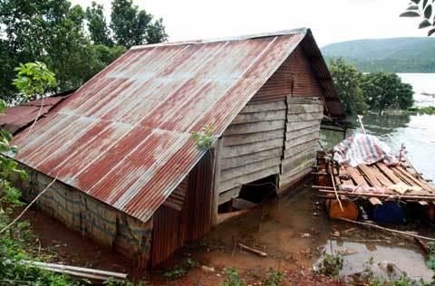 thủy điện tích nước, cà phê, thu hoạch, thiệt hại, Đồng Nai 2