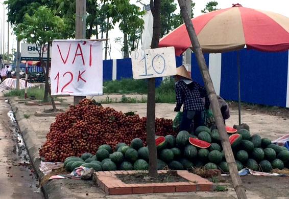 được-mùa, rớt-giá, giá-rẻ-như-rau, hoa-quả, vải-thiều, Lục-Ngạn, măng-cụt, mận, Trung-Quốc, nhà-vườn, chợ, vỉa-hè, xuất-khẩu, dội-chợ