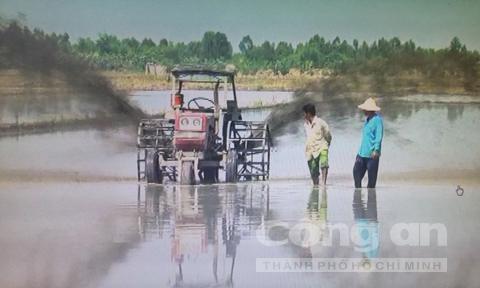 nông dân, hai lúa, tự chế, máy xúc, máy gặt, Võ Văn Phước, máy phun thuốc, nông-dân, hai-lúa, tự-chế, máy-xúc, máy-gặt, Võ-Văn-Phước, máy-phun-thuốc,